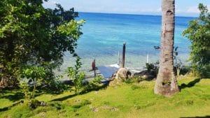 vue-mer-plage-végétation