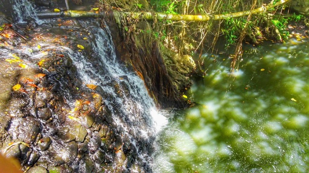 Chute d'eau de Latilel Falls à Sainte Lucie