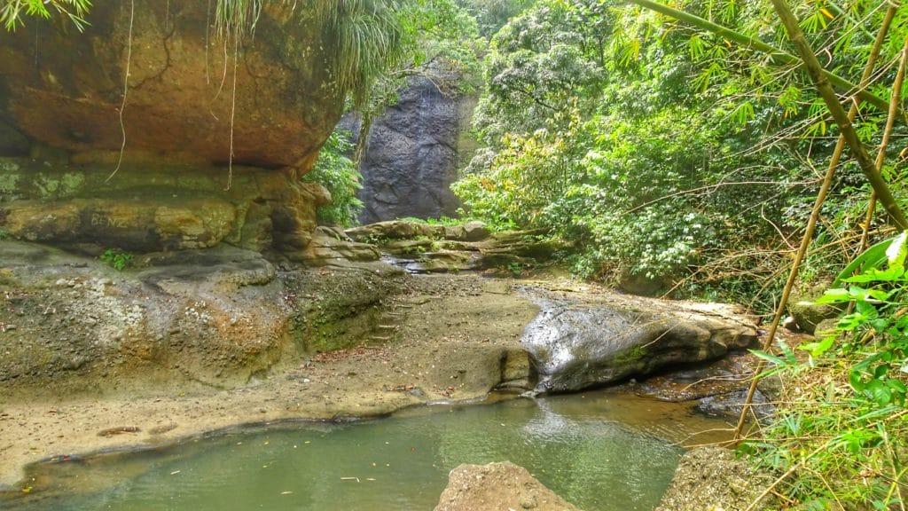 crique au milieu de la forêt tropicale de Sainte Lucie