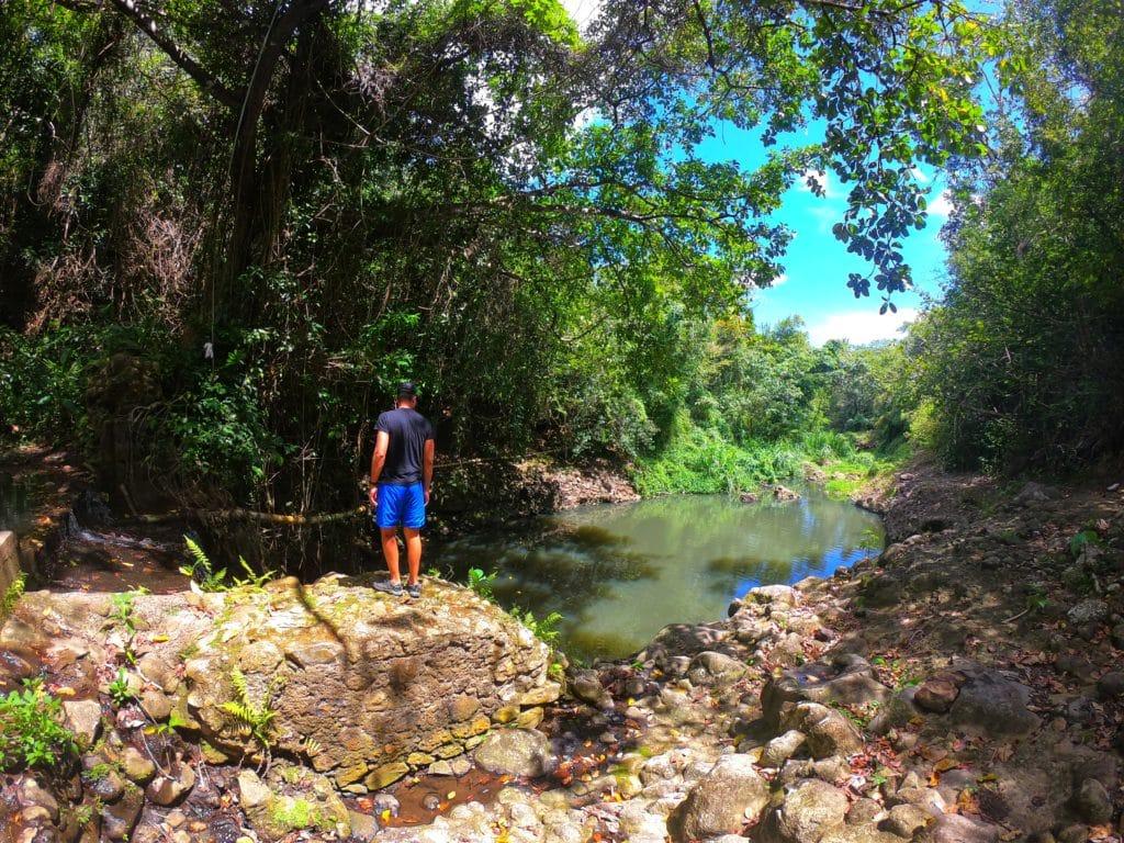 Anthony du blog de Partir Loin face à un cours d'eau en pleine forêt tropicale à Sainte Lucie