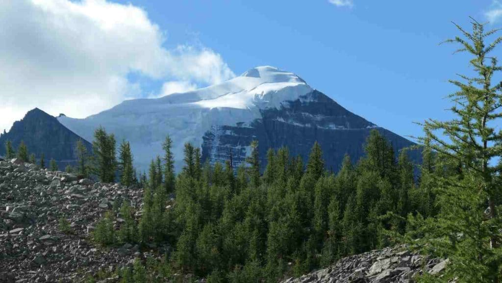 belle montagne enneigé en alberta