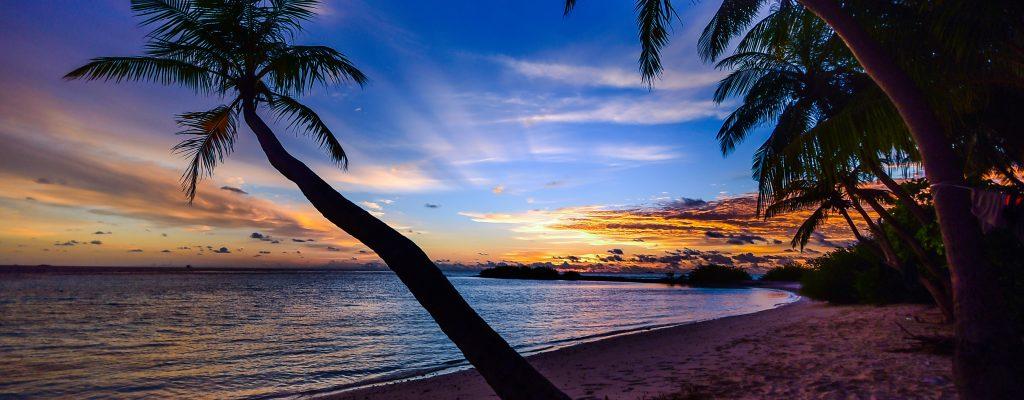 Couché de soleil sur une plage paradisiaque entouré de palmier