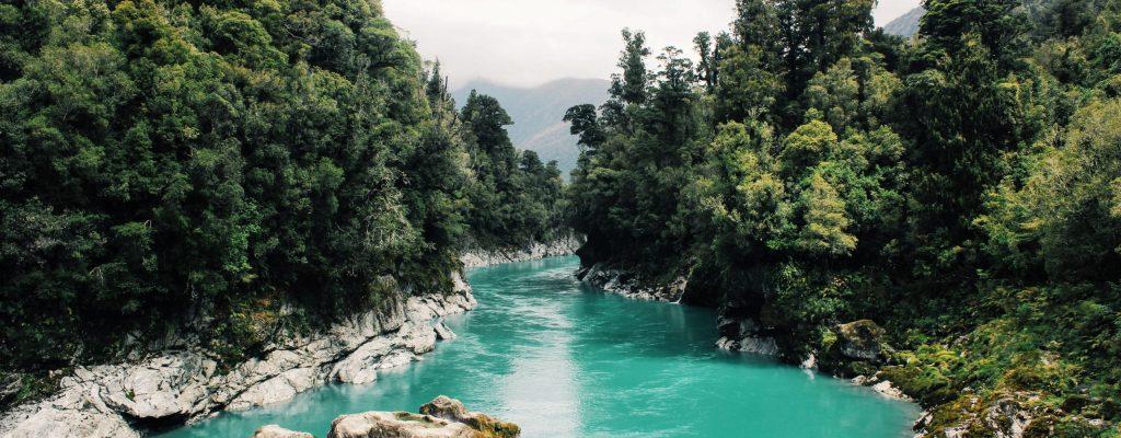 rivière bleu azure entourée d'arbre
